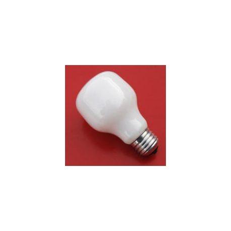 Paterson Enlarger Lamp 230/240v 75w