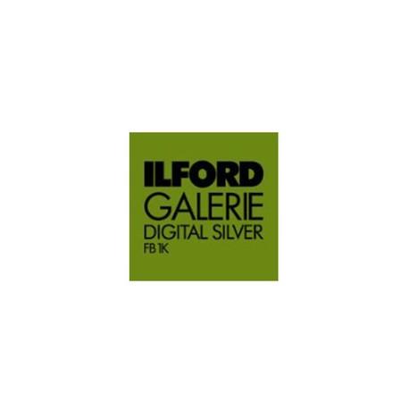 Ilford Galerie FB Digital Silver